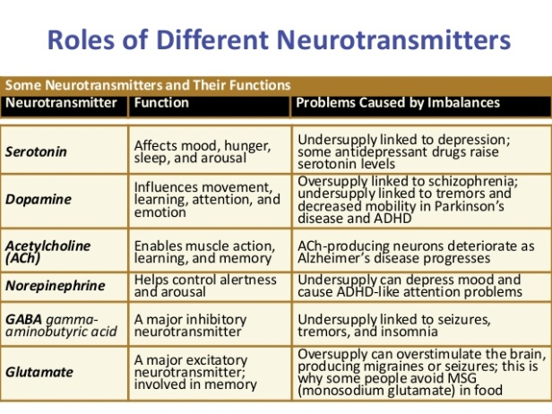 Role of neurotransmitters.jpg
