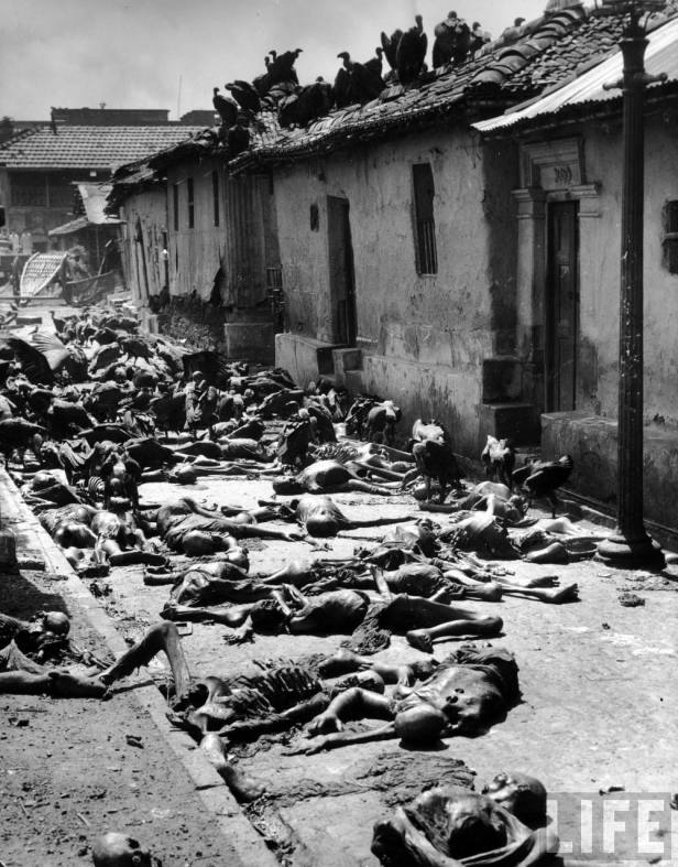 Vultures feeding on corpses lying abandoned in alleyway after bloody rioting between Hindus and Muslims Calcutta (Kolkata) 1946.jpg